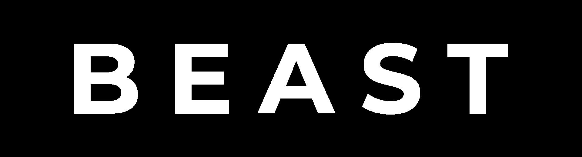 BEAST TESLA RENT